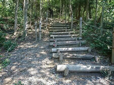 四日市スポーツランド コース中盤 200段の階段