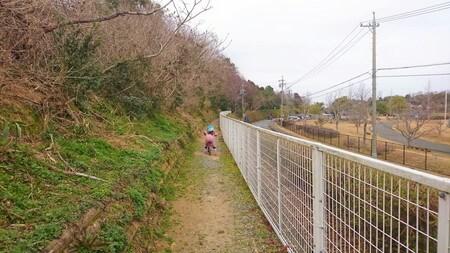 大仏山公園 歩道