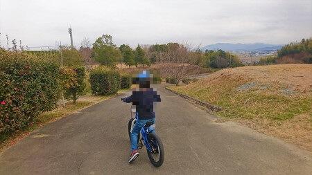 大仏山公園 道路