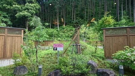 湯ノ口温泉 休憩所からの景色