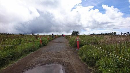 キラウエアカルデラへ進む道
