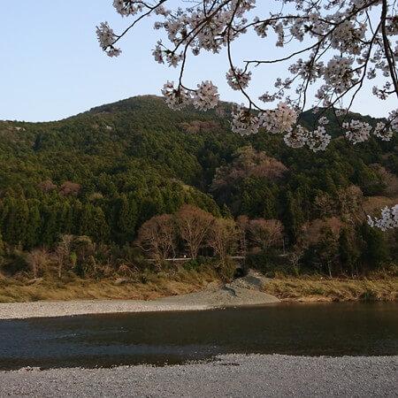 宮リバー 山と川と桜