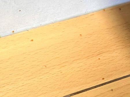 キッチンの汚れた床